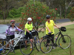 Some chose to visit the gardens on bikes